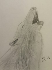 Wolf Howling, Pencil, 2 February 2009