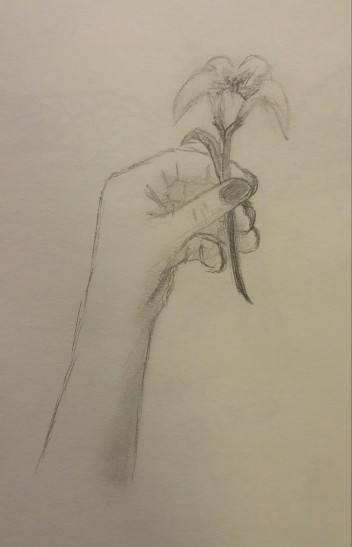 Hand Drawing, Pencil, July 2008