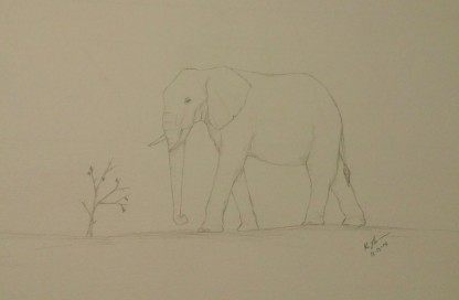 Elephant Sketch, Pencil, 13 December 2015